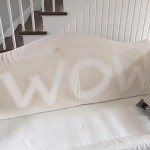 White Upholstery Cleaning in Branford CT